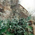Percorso enogastronomico di San Martino | Villa S. Stefano