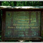Piscina della Verdesca | Sabaudia